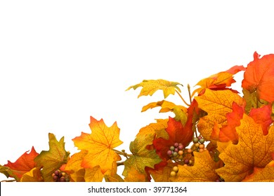 Fall leaves making a border isolated on a white background, fall border