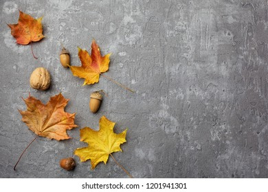 Fall Leaves on grey background Trendy Stylish Concept. Vintage. Flat lay, top view
