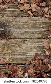 Fall leaves on weathered wooden planks-right half circle