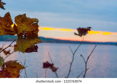 Fall leaves over a lake