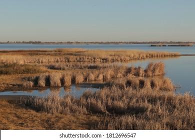 Fall at Little Salt Marsh, Quivera National Wildlife Refuge, Kansas
