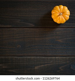 Fall Mini Pumpkin in Minimalist Still Life Card on Moody, Dark Shiplap Wood Boards with Extra Room or space for copy, text or your words.  Square crop photo from above with trendy flat layout view