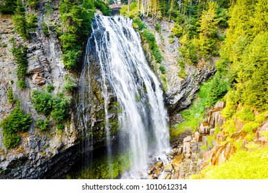 Fall at Mt Rainier National Park
