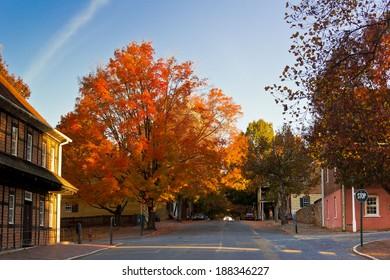 Fall in Old Salem