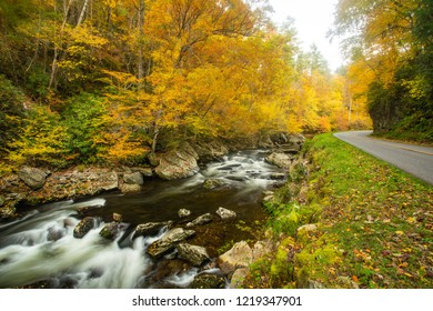 Fall on Little River Road brings spectacular autumn leaves in Smoky Mountains of Tennessee