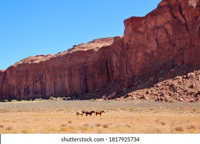 A fall photo of horses in Monument Valley.