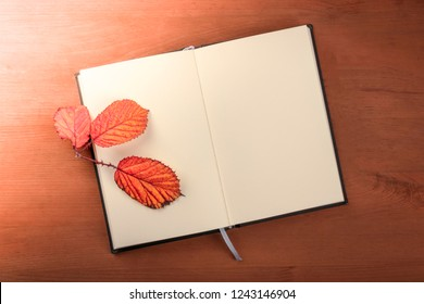 Fall Poetry. A photo of an open notebook with a thorny branch with vibrant autumn leaves, shot from the top on a dark rustic wooden desk with copy space