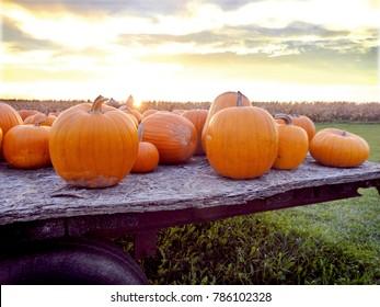 Fall Pumpkins on a Hayride