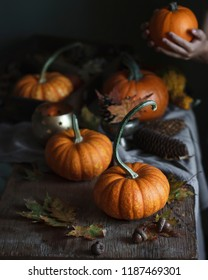 Fall pumpkins on the table, harvest, halloween space background