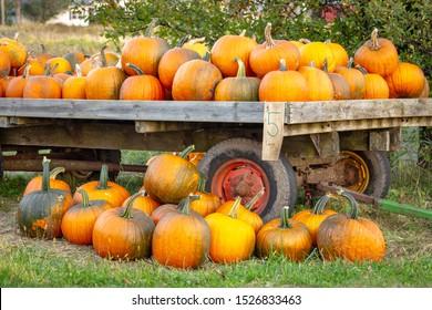 Fall pumpkins for sale on a roadside cart