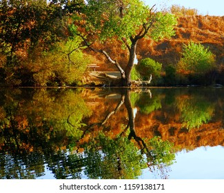 Fall reflection on water