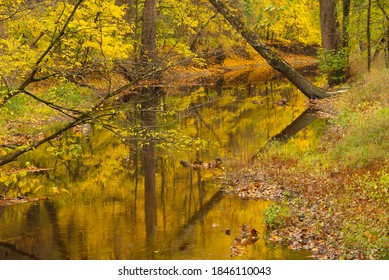Fall reflections in the creek