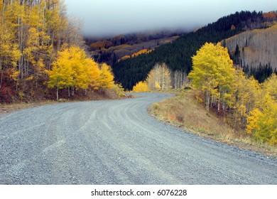 The fall road and fall foliage