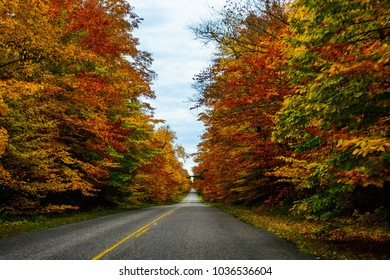 Fall road in Pictured Rocks National Lakeshore, Munising, MI, USA. Gorgeous display of fall colors, leaves, red, orange, green and yellow trees with both side of empty road.