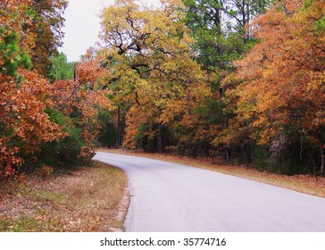 fall road in Texas 2