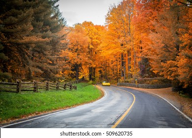Fall Road with Yellow Trees and a car