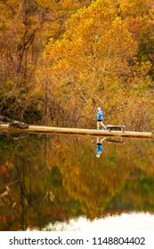 Fall Run in the Ozarks