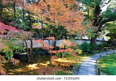 Fall scenery of a beautiful corner in a Japanese garden with colorful foliage of fiery maple trees by a paved footpath through the autumn forest in Shoren-in, a famous Buddhist Temple in Kyoto, Japan