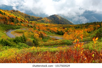 Fall scenery of a car driving on a sharp highway curve winding thru colorful forests on the mountainside with foggy mountains in background in Shiga Kogen Highlands, a national park in Nagano, Japan