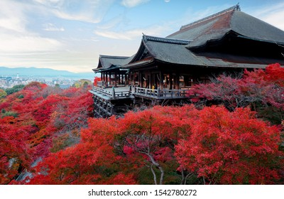 Fall scenery of Kiyomizu Dera, a famous Buddhist Temple & popular tourist attraction in Kyoto, Japan, with amazing foliage of fiery maple trees by the wooden stage overlooking downtown in background