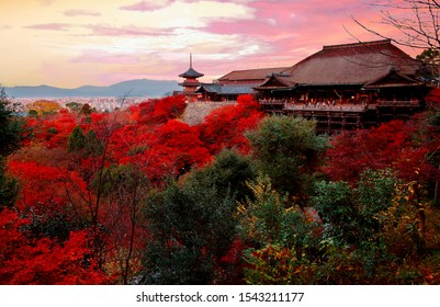 Fall scenery of Kiyomizu Dera, a famous Buddhist Temple & a popular tourist attraction in Kyoto, Japan, with fiery maple trees surrounding the wooden stage & the pagoda under dramatic sunset sky