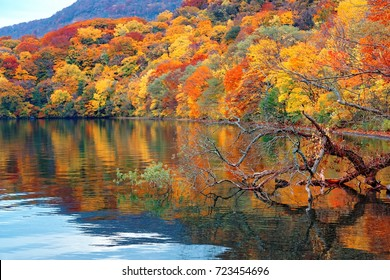 Fall scenery of majestic Towada Lake with colorful autumn trees on lakeside mountains reflected in the peaceful water in Towada Hachimantai National Park, Aomori, Japan ~Beautiful Japanese countryside
