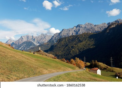 Fall scenery of a pathway leading to Ardez village, with cattle grazing on the meadow and a ruined fortress perched on a hilltop under rocky alpine mountains, in Engadin Valley, Grisons, Switzerland