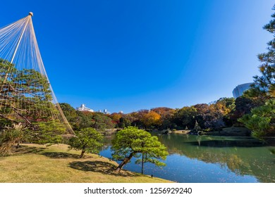 """Fall scenery of """"Rikugien-Garden"""". You can see the beautiful Japanese garden scenery of autumn leaves and pond. Bunkyo, Tokyo, Japan."""