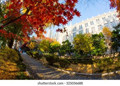 The fall season in Kyunghee University ,Seoul, Korea