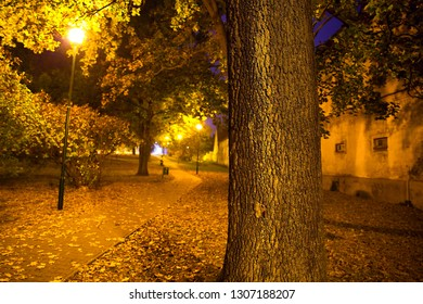 Fall season park at midnight, city Kolín, Czech republic,