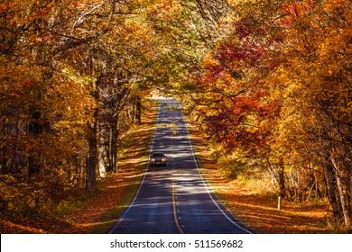 Fall Season at Skyline Drive. Shenandoah National Park