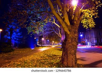 Fall season street at midnight, city Kolín, Czech republic,