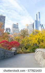 Fall is the season in which Central Park is in full splendor and this convination of skyline and nature is unique to NYC