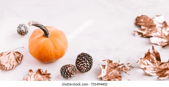 Fall seasonal still life on white marble background. Little pumkin, rose gold leaves, cones. Copy space, horizontal, long format banner