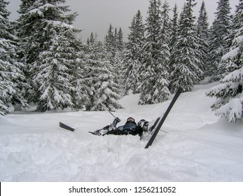 Fall skier on the ski slope. Bump into a tree, bump into a spruce. Spruce forest in the background.  Without helmet.