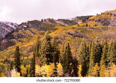 Fall at Solitude Ski Resort