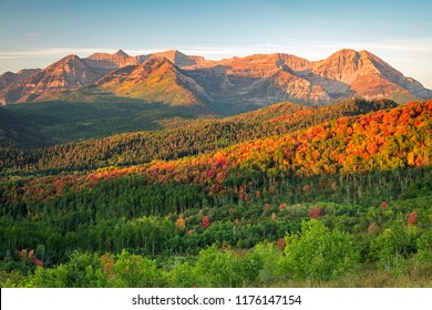 Fall splendor in the Wasatch Mountains, Utah, USA.