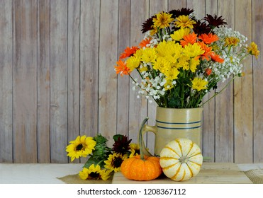 Fall still life of casual floral arrangement of daisies and baby's breath in a vintage ceramic pitcher with mini pumpkins on a plank table and wood background. Copy space