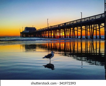 Fall Sunset from Newport Pier in Newport Beach, California