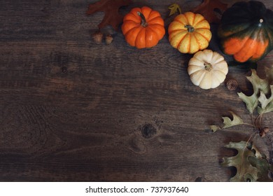 Fall Thanksgiving and Halloween pumpkins, leaves, acorn squash over dark wood table background shot from directly above