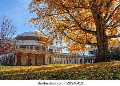 Fall at the University of Virginia, Charlottesville