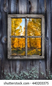 Fall window design of weathered wood and colorful foliage