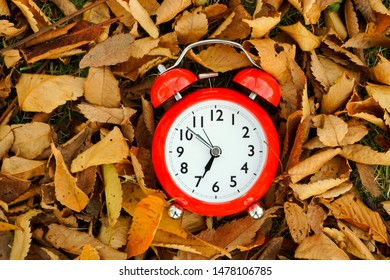 Fall and winter material. Deciduous leaves and time.