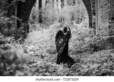 Fallen angel with black wings in the old forest