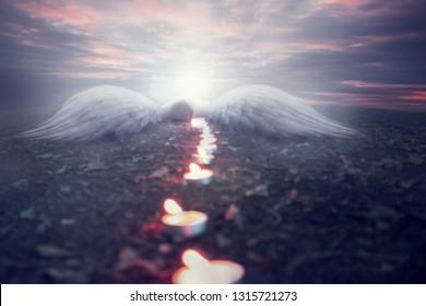 Fallen angel on earth