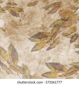Fallen autumn leaf on the abstract paper background with stains
