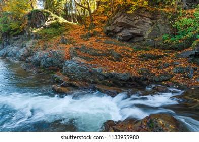 Fallen autumn leaves. Mountain river with a cascade