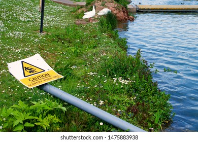"""Fallen """"Caution Slippery When Wet"""" Sign Lying on grass on the riverbank."""