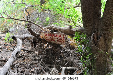 Fallen danger sign sitting atop fallen broken tree branches