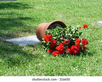 Fallen flowers on grave of fallen hero, Houston National Cemetery, Texas
